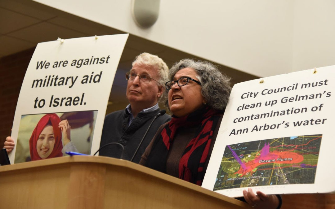 [Article]: Anti-Israel activist and environmentalist running for Ann Arbor council