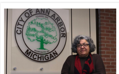 (Article)Pro IDF group goes on the attack against Ann Arbor City Council candidate Dr. Mozhgan Savabieasfahani